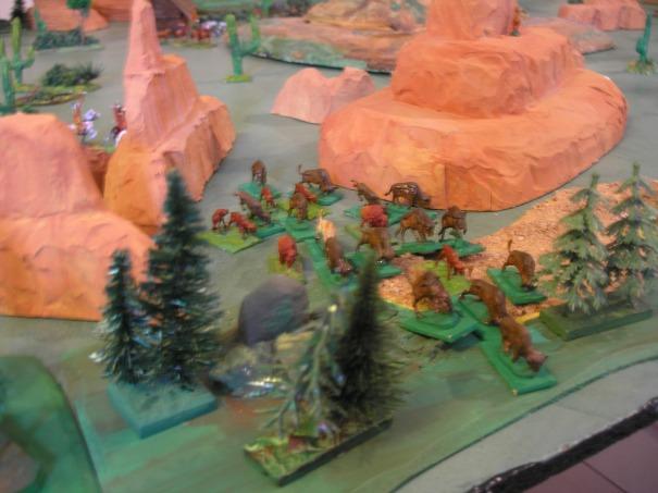 Chassé par des braconniers, le bison blanc quitte la zone siuvi de son troupeau